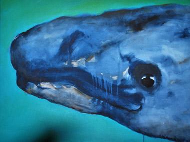 La joie de la baleine