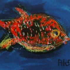 Funny Fish 5
