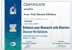 Assoc. Prof. Hussam Elbehiery_001