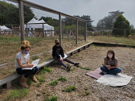 Outdoor Learning at MdMCS