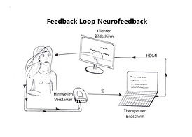 Feedbackloop NF_beschriftet web.jpg