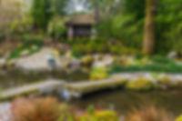 Pine-Lodge-Gardens-1999.jpg