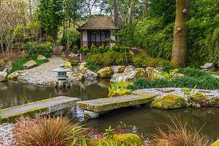 pine lodge gardens