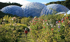 The-Eden-Project-Cornwall-001.jpg