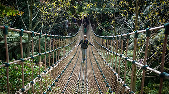 the-lost-gardens-of-heligan-cornwall-bur