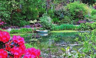 Hidden Vally Gardens