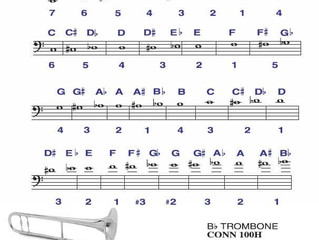 Music literacy and brass instrument fingerings for beginners