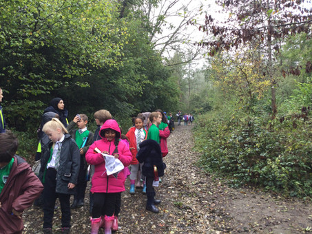 Year 4 trip to Banstead Woods!