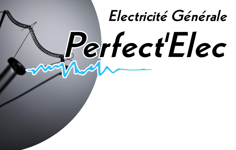 Logo PRFECT'ELEC.png