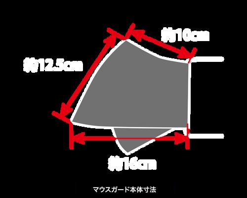 ARMG-0107本体寸法.png