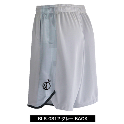 BLS-0312_B.png