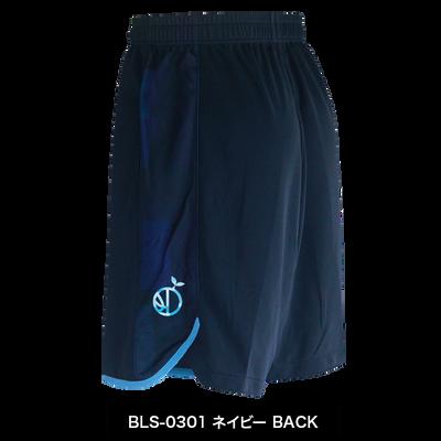 BLS-0301_B.png