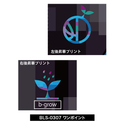 BLS-0307-ワンポイント.png