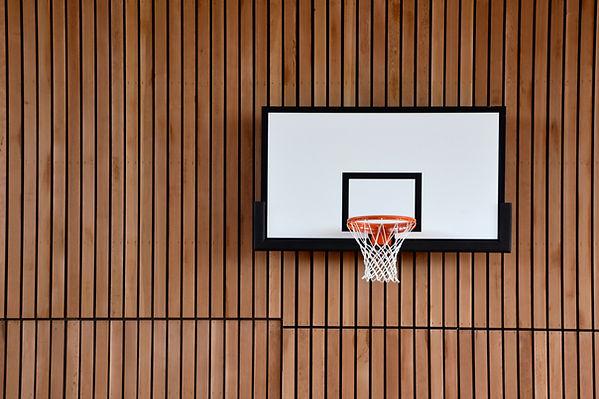 basketball-5500888.jpg