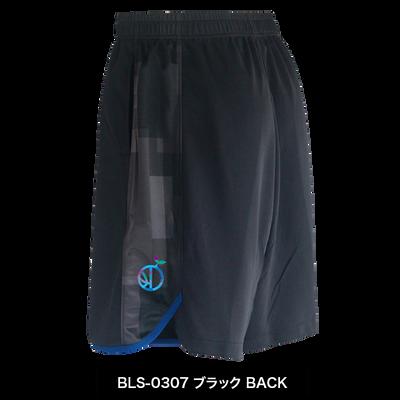 BLS-0307_B.png