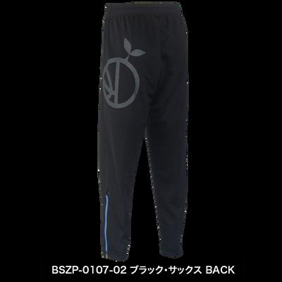 BSZP-0107-02_B.png
