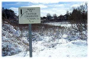 ChathamBarsSwamp.jpg