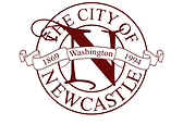 Newcastle4by3Logo.png