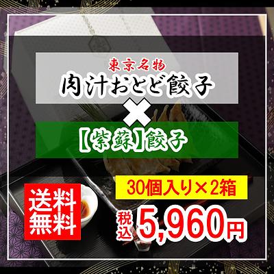 【肉汁おとど餃子】と【紫蘇餃子】のセット