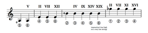 Fretting pitches in various positions on a guitar neck