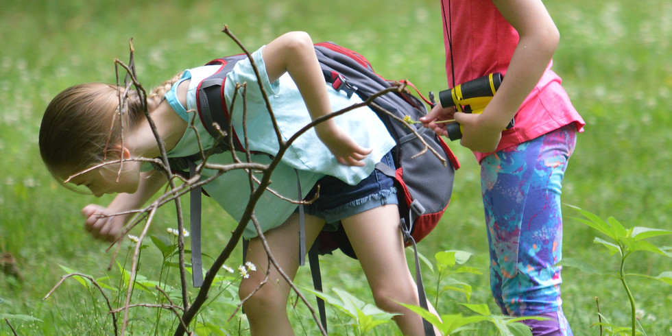 Fireflies and wiggly worms! Create a bug box.