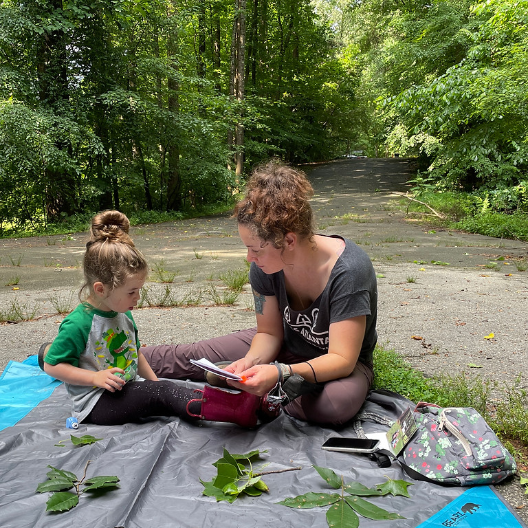 Leafy Learning