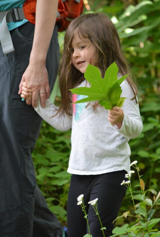 Found my favorite leaf!