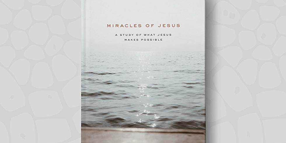 Miracles of Jesus - Women's Zoom Study