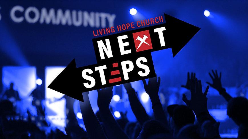 Next Steps Logo.jpg