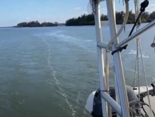 Peacefully Under Sail on the Indian River Lagoon, March 2021