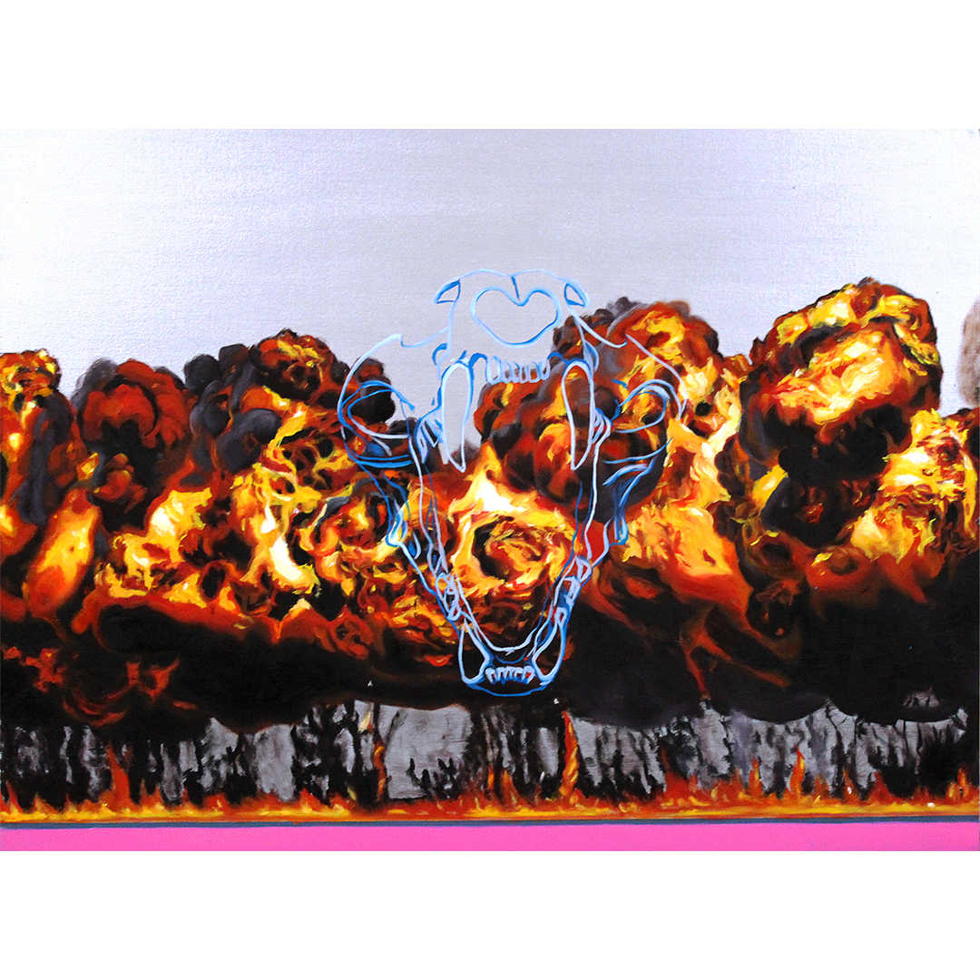 Napalm-r-1  JPG.jpg