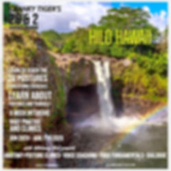 Waterfall hilo Insta_edited_edited.jpg