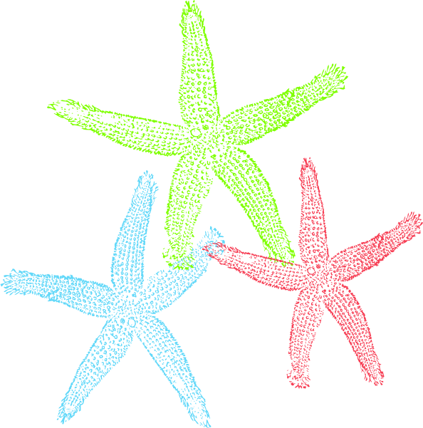 Starfish-free-to-use-clip-art