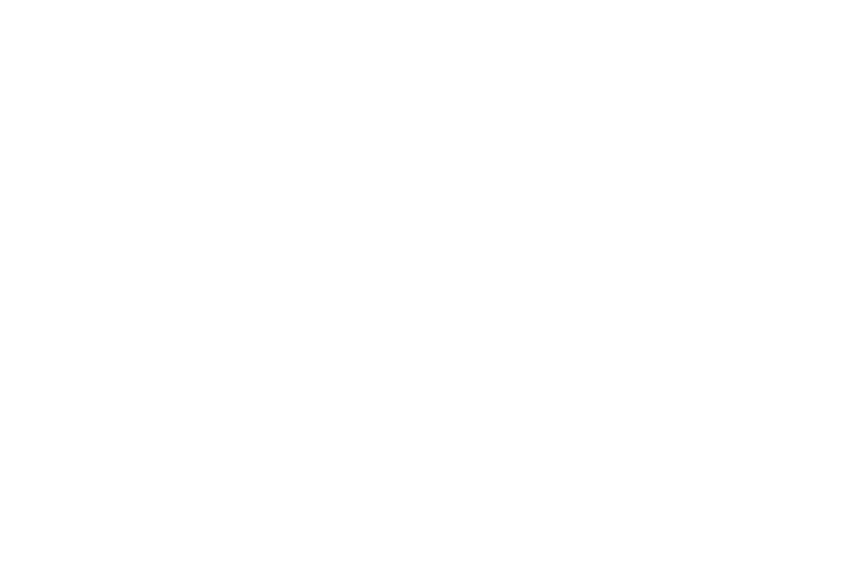 SILVER MEDAL - GLOBAL MUSIC AWARDS - 2017