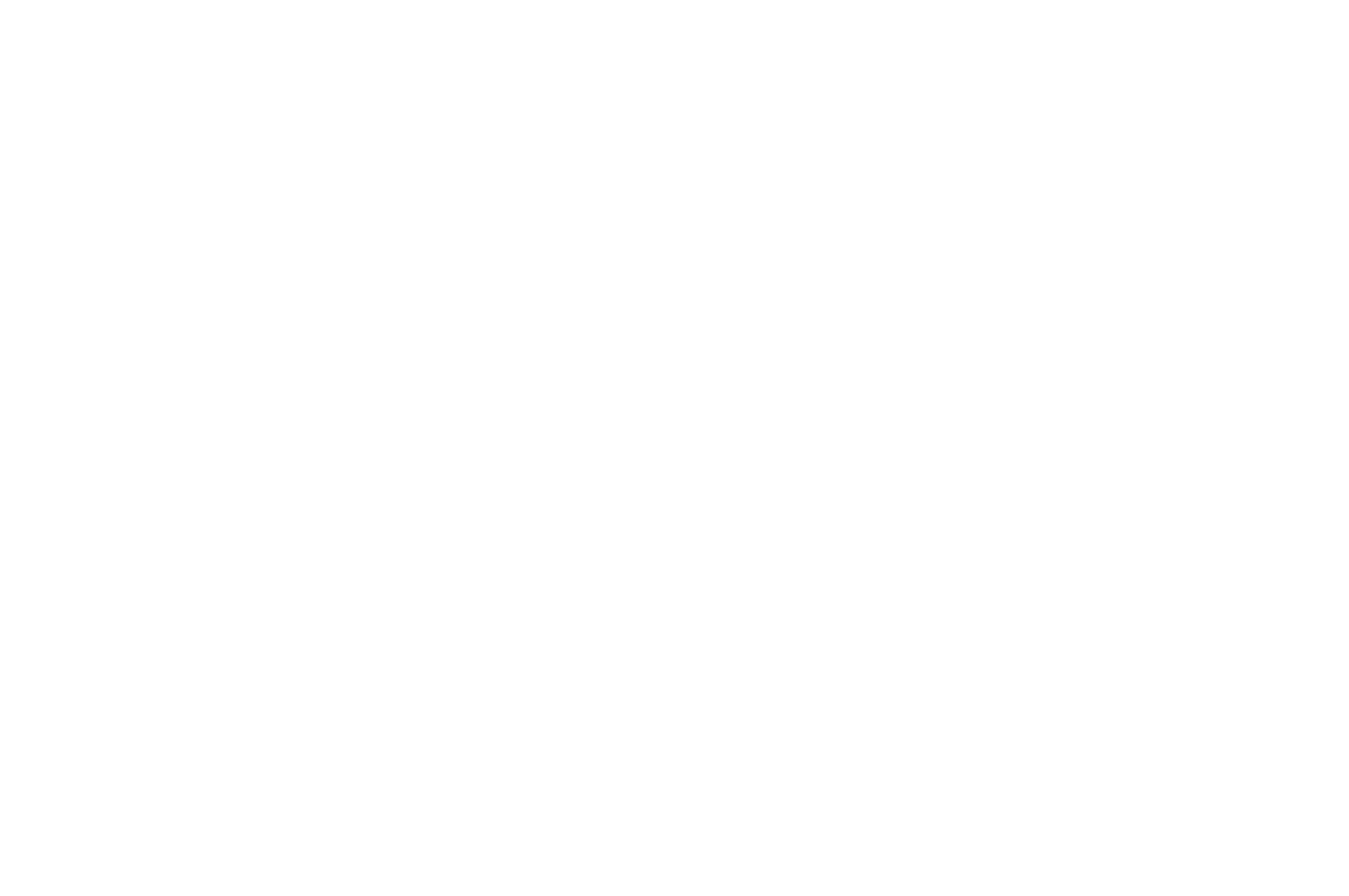 FINALIST - LOS ANGELES CINEFEST - 2017