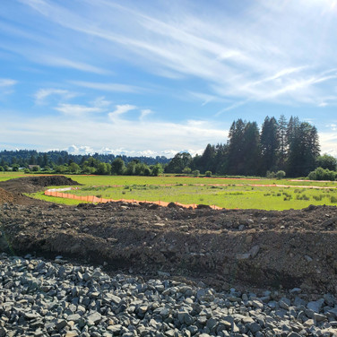 Energy Land Short Plat Stormwater Review