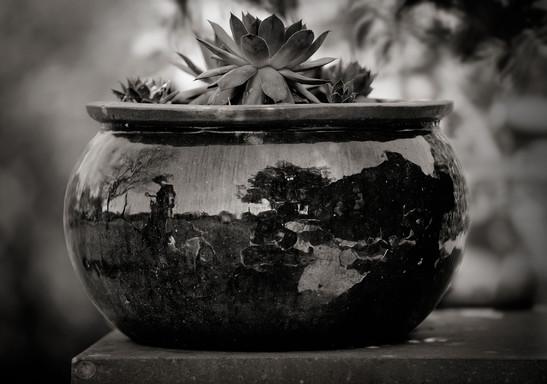 Le pot - Jean-Marie Woit