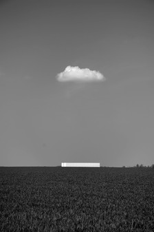 La Hesbaye minimaliste - Thierry Salmon
