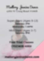 Pink Kiddie Ballet Studio Flyer (2).png