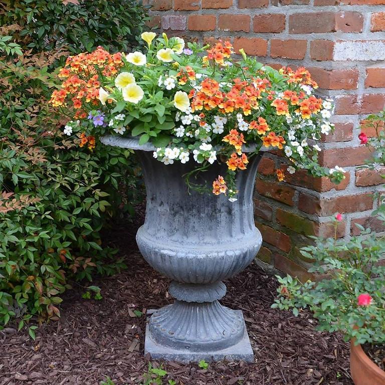 Southern Garden Design: Tricks of the Trade