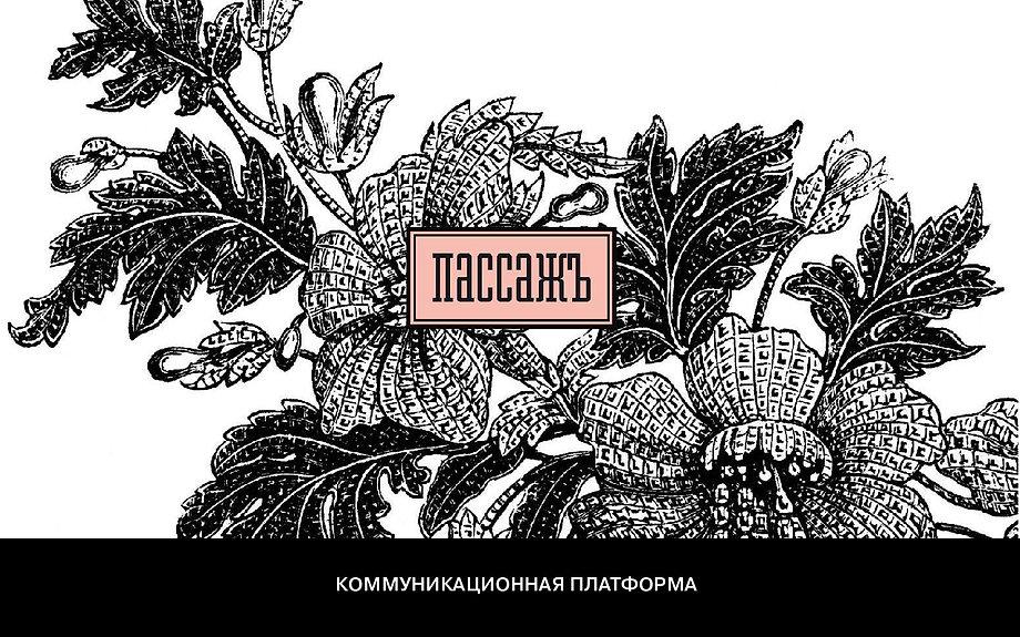 ПАССАЖ_ком.платформа-01.jpg