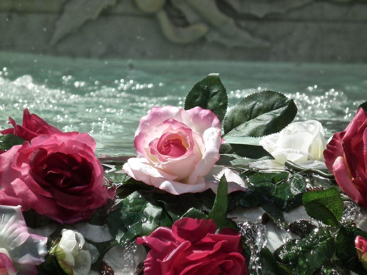 FESTIVAL MONDIAL DES ROSES