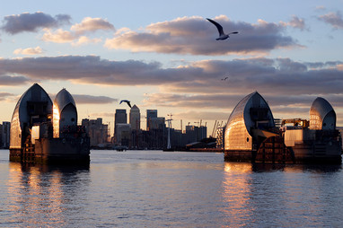 Thames Barrier and seagulls