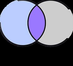 Logo Sinixisi 2.png