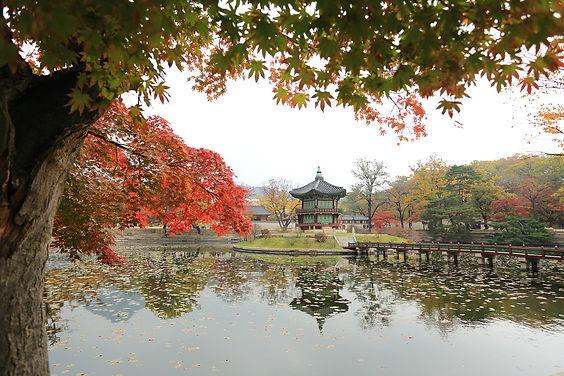gyeongbok-palace-3412543_1920.jpg