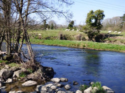 River Ithon.jpg
