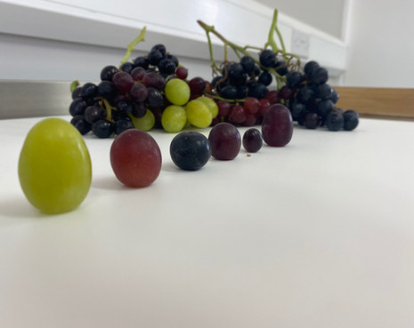 Grape taste testing