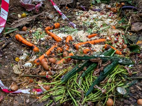 No more food waste!