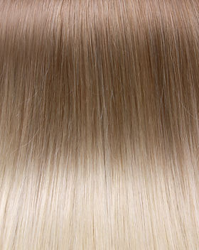36_Chestnut_Ture BLonde Balayage.jpg