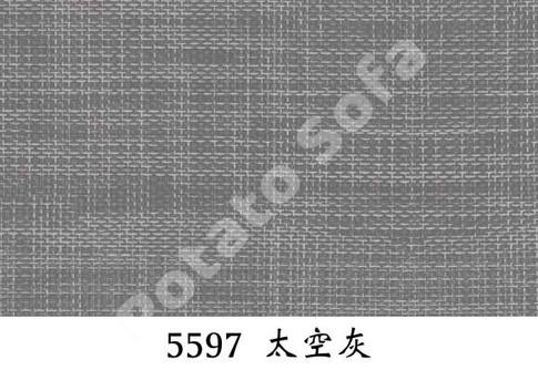 5597 太空灰